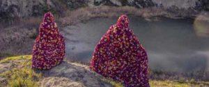 terra-dei-fiori